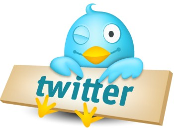 What is the professional way of use of Twitter?