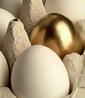 The blog phenomenon and return of investment (ROI)
