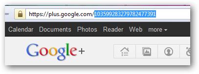 Google plus account id