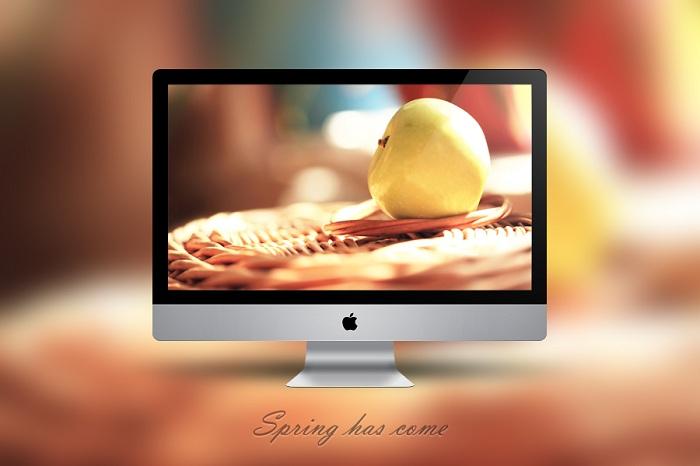Still Life Photo Wallpaper - Spring Has Come