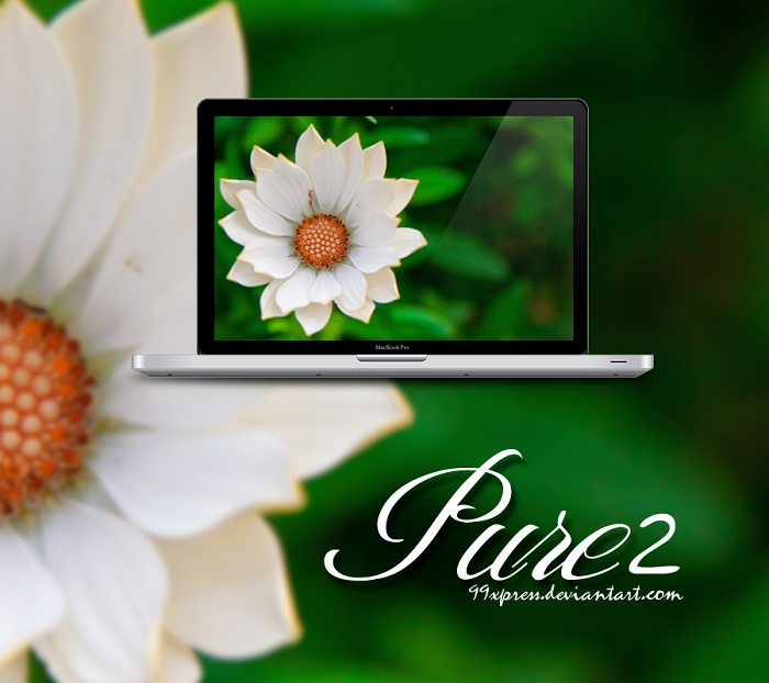 White Flower Wallpaper Set for PC and Mac