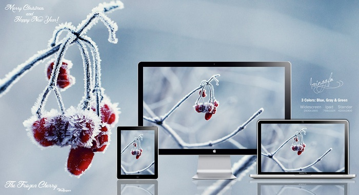 Frozen Cherry Wallpaper Pack