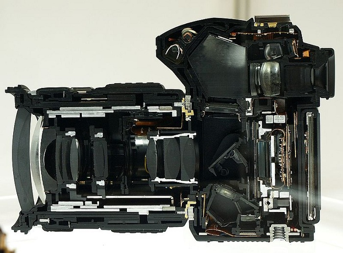 dslr cut section