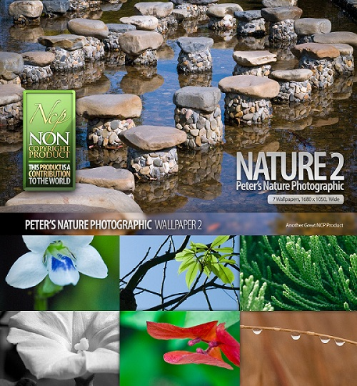 Nature Photograph Wallpaper Set