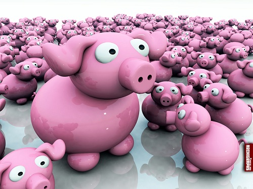 Piggy 3D Wallpaper Set