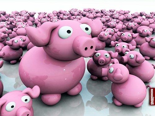 Piggy 3D Wallpaper Set