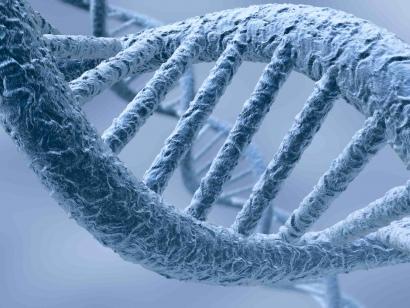 Evolutionary Computing and Genetic Programing