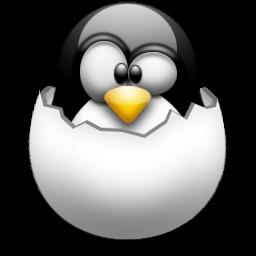 Linux Environment on Windows