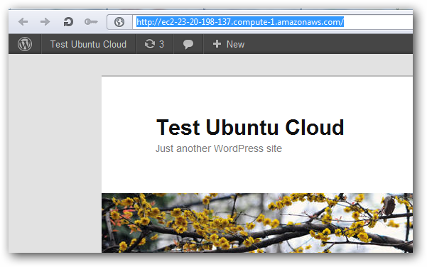 Ubuntu Cloud Guest WordPress