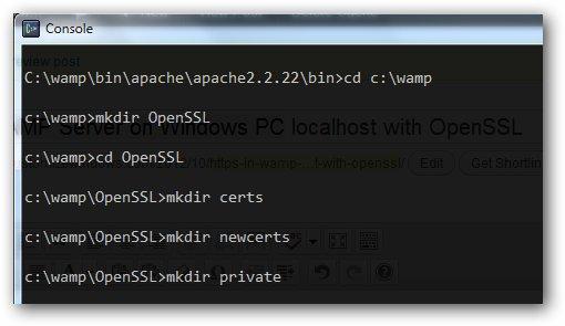 HTTPS in WAMP Server on Windows