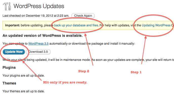 Proper Method to Update WordPress