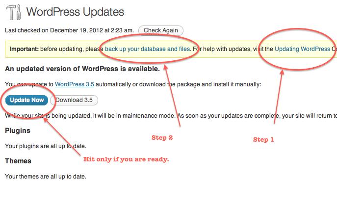 Proper Method to Update WordPress