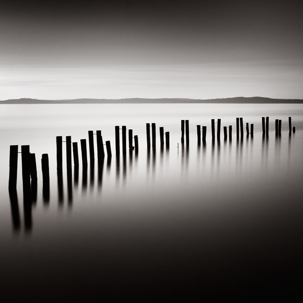 Vertical Lines in Photographic Composition