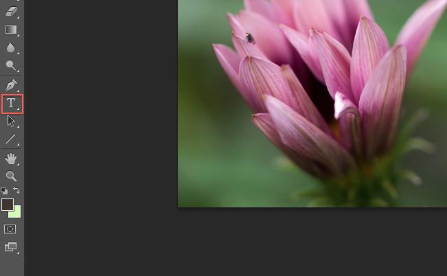 Insert Signature in Digital Photography