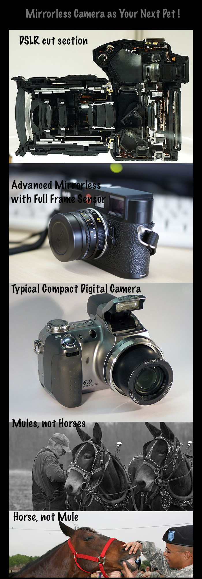 Mirrorless-camera-versus-DSLR