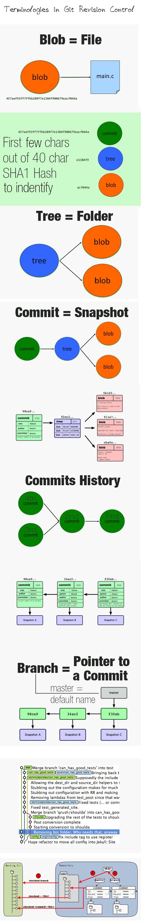 Common-Terminologies-in-Revision-Control