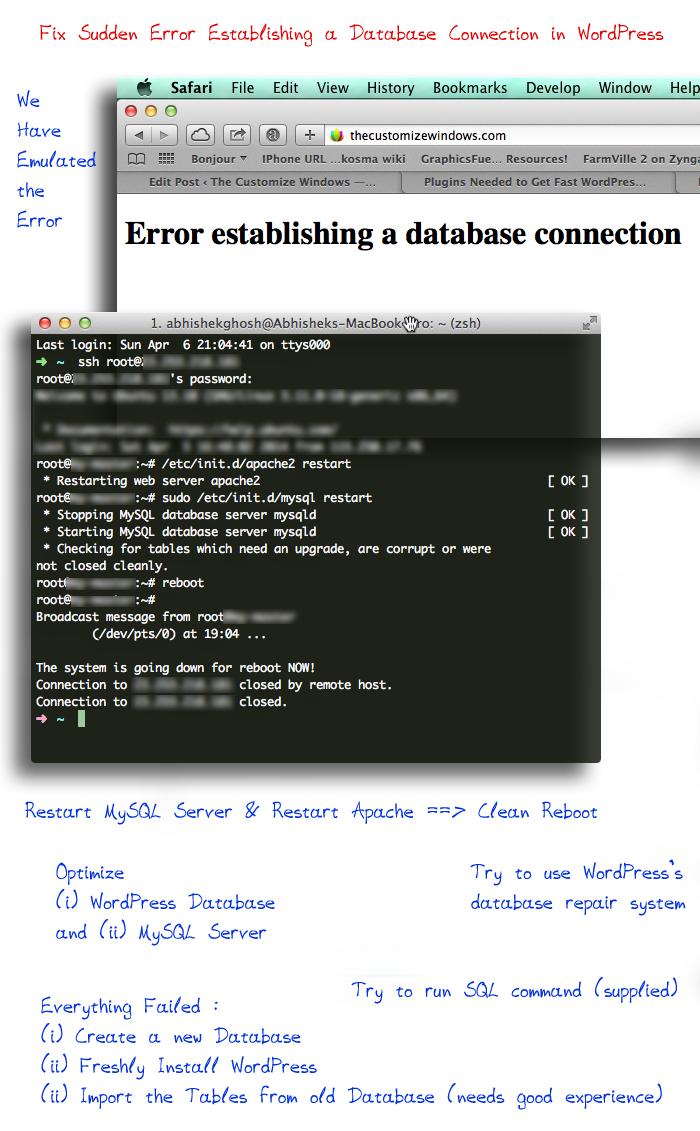 Establishing A Seasonal Capsule Part 1: Fix Sudden Error Establishing A Database Connection WordPress