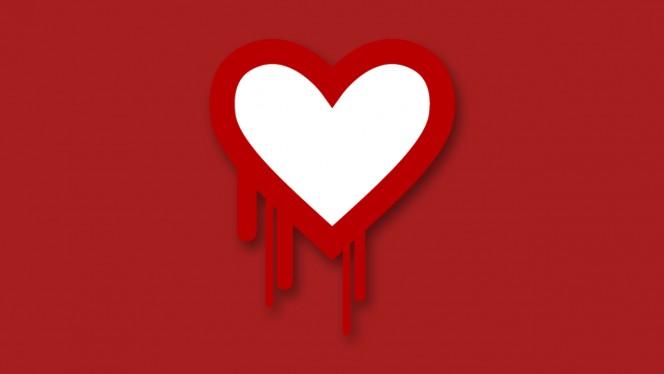 Heartbleed NSA