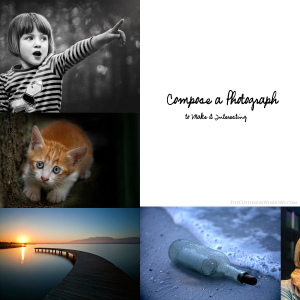 How-to-Compose-a-Photograph-to-Make-it-Interesting