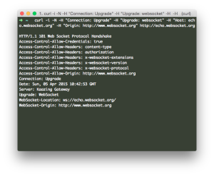 What is WebSocket Protocol