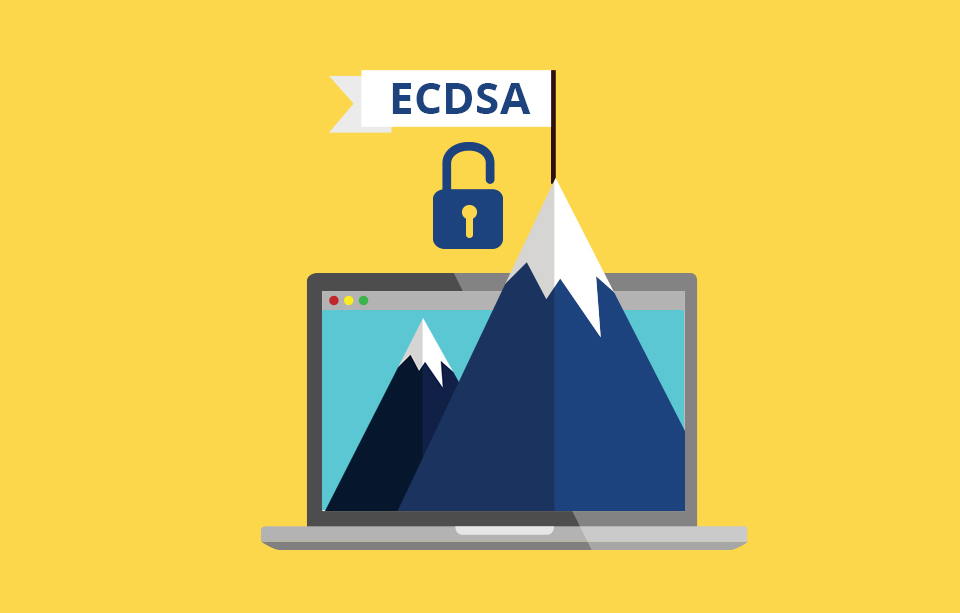 Is It Time To Upgrade To Ecc Ssl Certificate Ecdsa The