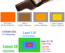 Full Frame vs Crop (APS-C) : Image Quality Difference For Sensor Size