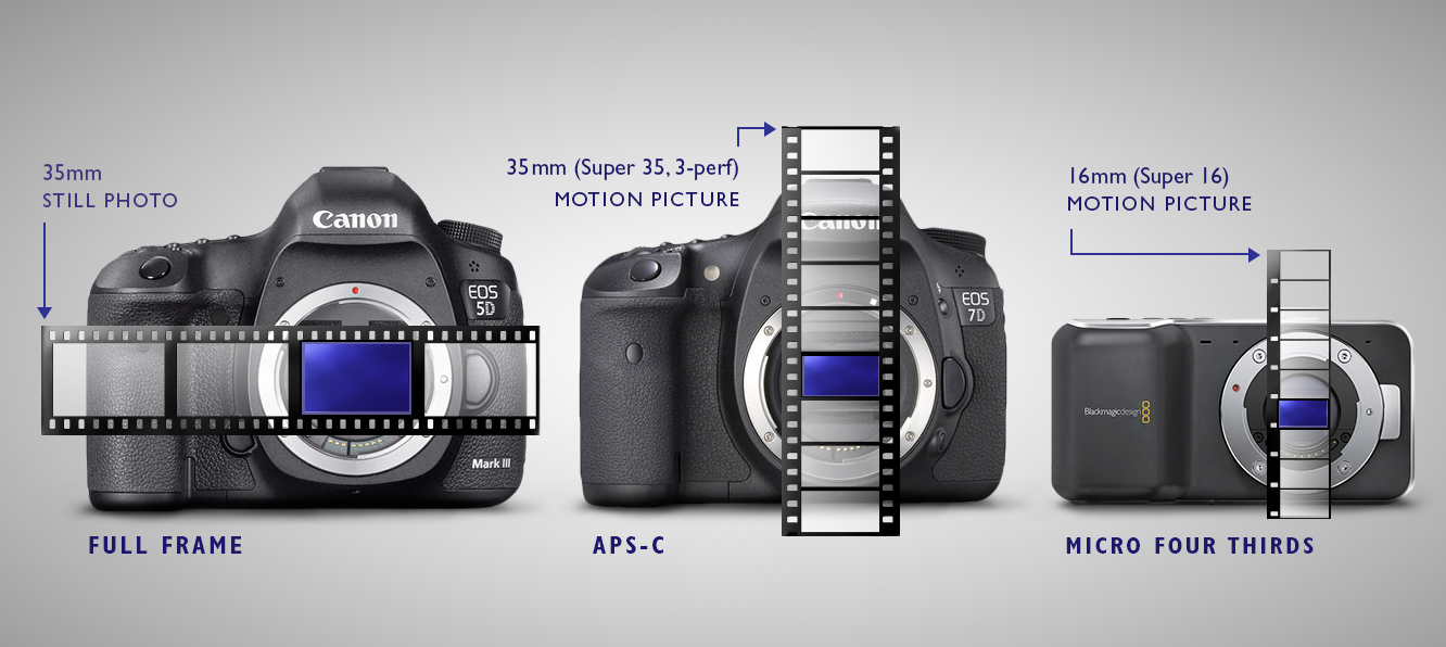 Full Frame vs Crop APS-C