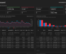 Install GoAccess Real-Time Web Log Analyzer : Apache, Ubuntu