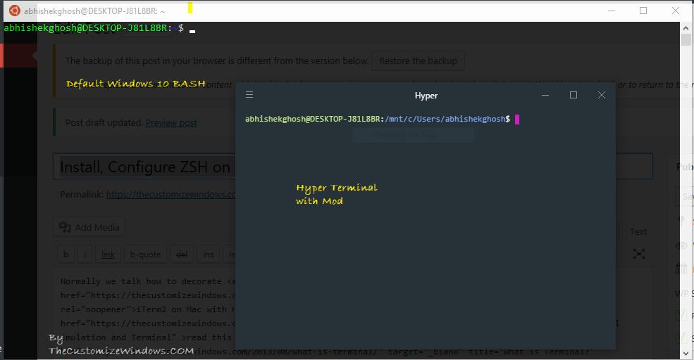 Install, Configure ZSH on Windows 10 Get UNIX Looking Terminal
