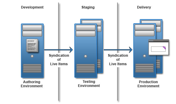 Staging Environment vs Production Environment
