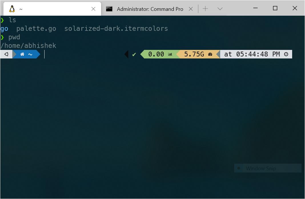Windows Terminal With Solarized Dark Oh-my-ZSH Theme
