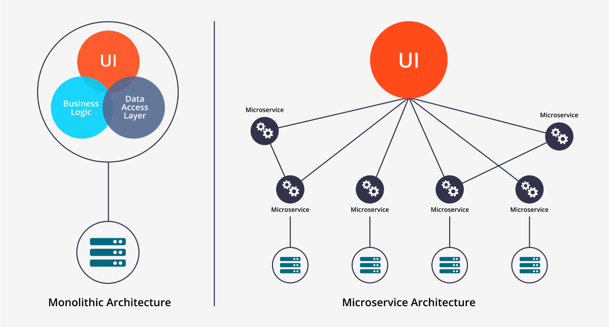 What You Need to Know About the Microservices